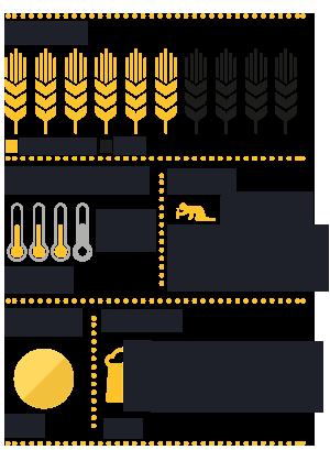 https://www.birrafria.it/wp-content/uploads/2021/07/berta_infograficaOK.png